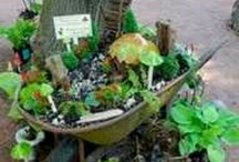 fairy gardens / by Wendy Stuart
