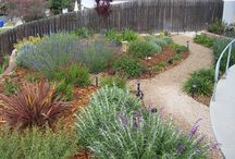 Garden ideas / Drought tolerant, easy backyard ideas
