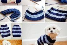 dog sweater = köpek kazağı