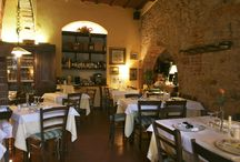 Montescudaio tuscany Italy