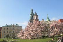 Kraków / Cracow