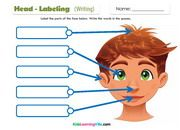 Body parts vocabulary and 5 senses