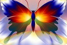 Butterfly -Perhonen