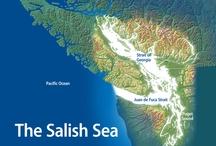 NW Coast Salish / Art, People, Spirits