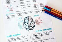 Psychology Notes