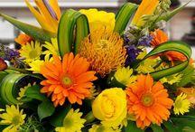Tropical Orange and Yellow Arrangements