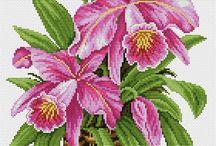 цветы в карзинках