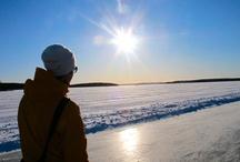 Sport / Att vi väljer att lyfta fram Sport som ett av våra profilområden är ganska naturligt. I Falun Borlänge-regionen finns stora möjligheter att utöva idrott och friluftsliv både sommar och vinter. Här finns naturen in på knuten och friluftslivet i blodet. Här finns idealiska förhållanden för så väl elitsatsande skidåkare och friidrottare, som för livsnjutaren på långfärdsskridsko eller fiskaren med kastspöet i handen.