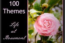100 Themes