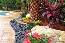 Pool Landscaping/Decor