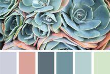 pick color