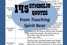 Touching spirit bear / Novel