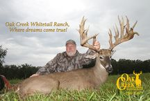 Oak Creek Monster Bucks 2015 / The Monsters of Oak Creek will be updated here.