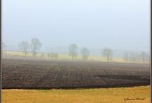 Landschap / Tijdens mijn wandelingen neem ik altijd mijn fototoestel mee en knip plaatjes.