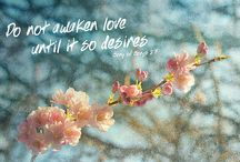 Quotes / Inspirational quotes and Bible verses. / by Erika Kimmich