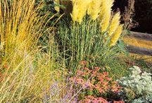 Beautiful Gardens / The garden of our dreams