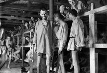 Camps de concentration / Dachau - Auschwitz - Buchenwald - Birkenau - Ravensbruck - Majdanek - Bergen-Belsen