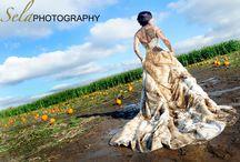 Trash the Dress  / by Amber Nicholson