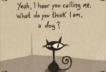 Pets motives