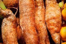 yucca gegen Arthritis