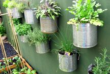 Recyled Project Ideas