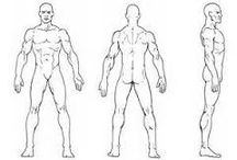 anatomy sheet