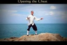 Taiji and Qigong / Videos, resources and images to instruct and inspire your Taiji and Qigong practice - from Singing Dragon