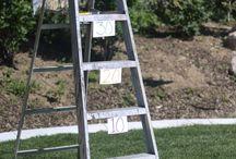 Step ladder target