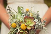 Succulent Weddings