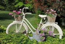 Plant a Bicycle