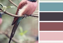 seasonal colour palettes