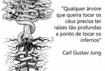 frases, dicas