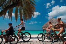 Aruba All Inclusive Resorts / Our favourite all inclusive resorts in Aruba.
