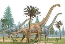 Dinosaurios / by seyla