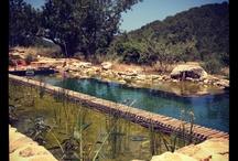 piscinas ecologicas