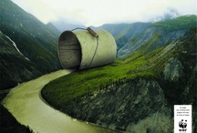 Environmentally Friendly  / by Image Eater