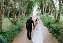 Dream Dress / Dream Wedding Dress Inspiration