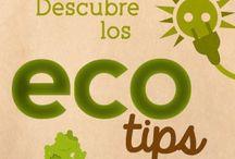 EcoTips para la vida diaria
