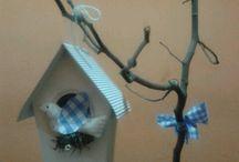 Bautismo casa de pajaritos