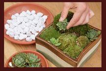 Verde que te quiero verde / Detalles, espacios, deleite para los sentidos...