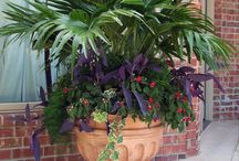 Pot scaping