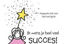 succes/geslaagd
