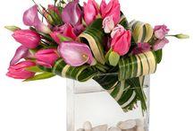 Flora / Wild flowers, flower arrangements, and just pretty flowers.