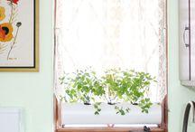Διακοσμηση κουζινας με φυτα