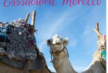 Travel Abroad: Morocco / by Lauren Murray