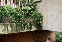 Tropical Concept