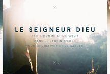#laBible Genèse
