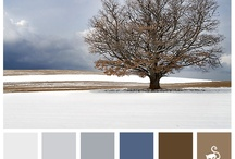 paint colors / by Melissa Young
