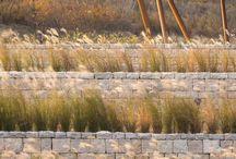 urban grassland