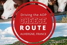 What to See & Do in France / From the Alps to the Pyrenees, Cote d'Azur to Normandie, there is much to see, do, taste, and love in France!